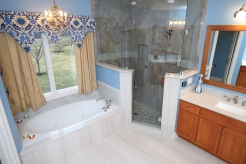 Seamless Shower Door Design